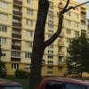 Orez stromu